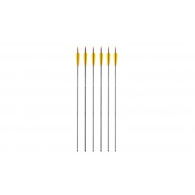 """Carbon arrows 30"""" EK 6pc"""