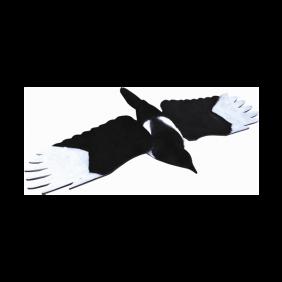 Flying Magpie Decoy JACK PYKE